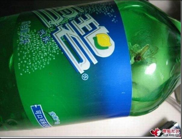 Uma surpresinha no refrigerante (1)
