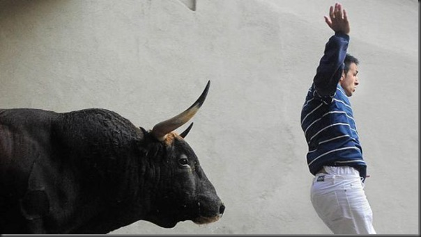 touro (1)