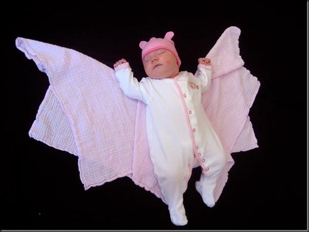 Lindas imagens de bebezinhos (8)