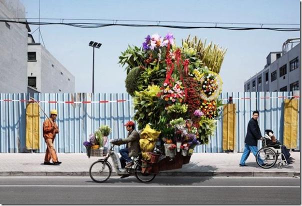 Pra que um caminhão se eu tenho uma bicicleta (4)