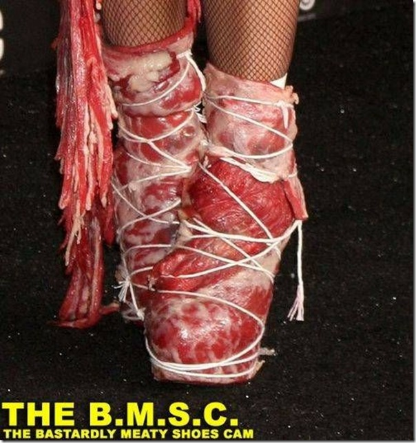 Lady Gaga e seu vestido feito de Carne (2)