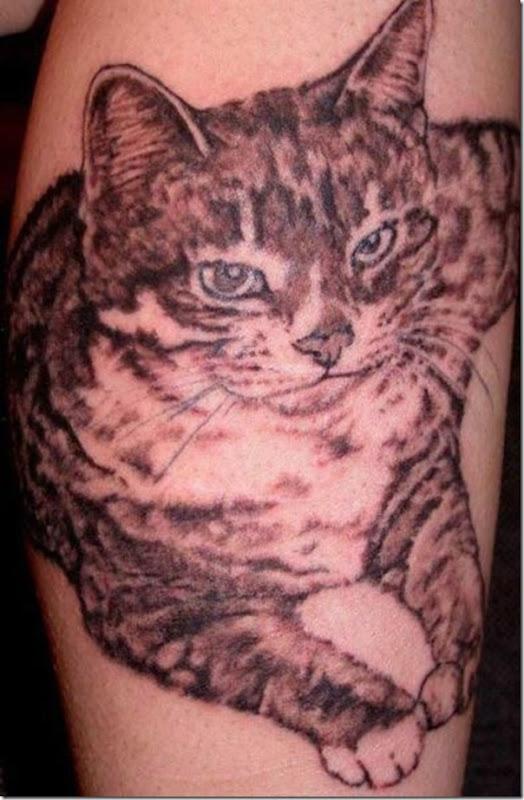 Tatuagem de gatos (3)