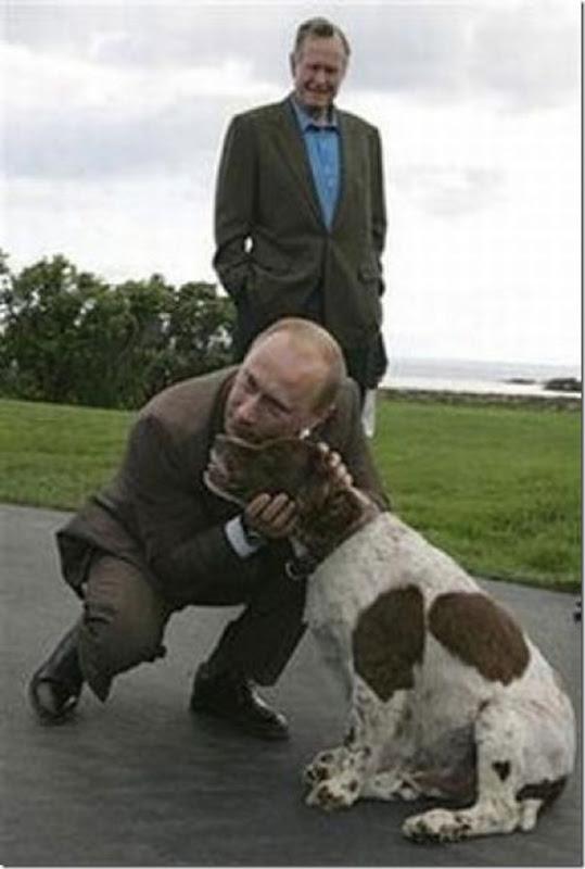 Vladimir Putin e o seu amor pelos animais (21)