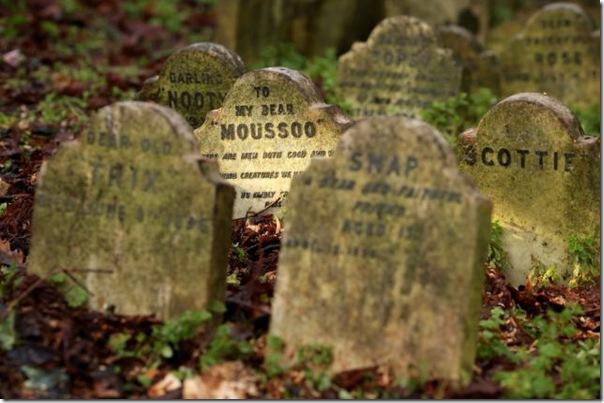 Cemitérios de animais de estimação em Londres (1)