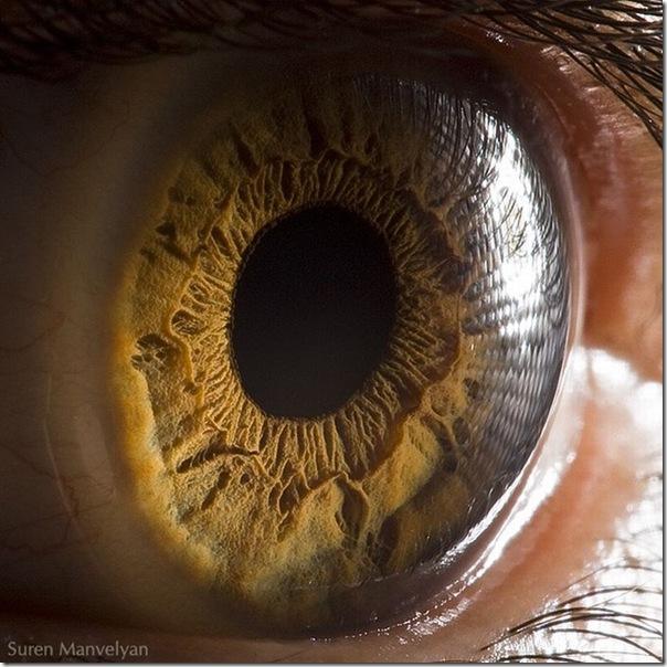 Fotos macro de olhos humanos (1)