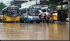 rualagadaonibus436