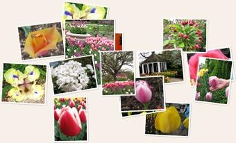 View Boerner Botanical Gardens