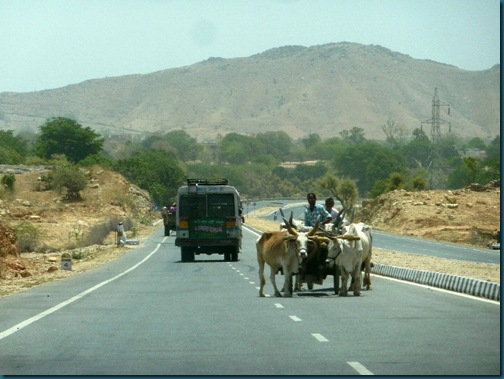 Bullock cart moving in the wrong direction on a motorway in Rajasthan