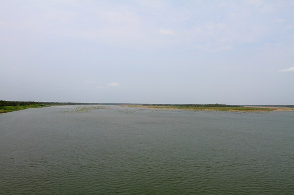 A View of Godavari River