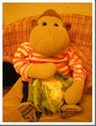 Monkey with cauliflower