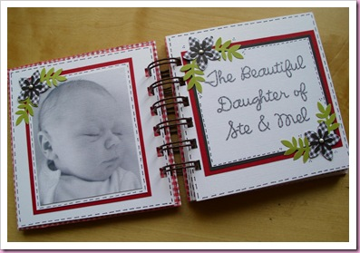 Gingham Mini Baby Book 2