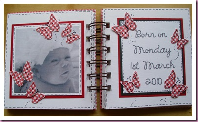 Gingham Mini Baby Book 1