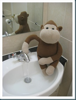 Monkey in Bathroom