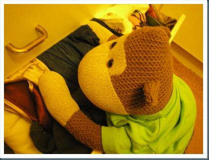 Monkey looking in drawers