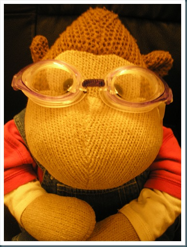 Monkey with goggles