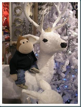 Riding A reindeer