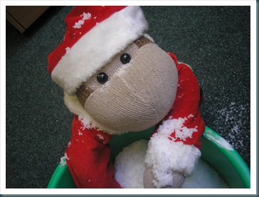 snowmonkey 5