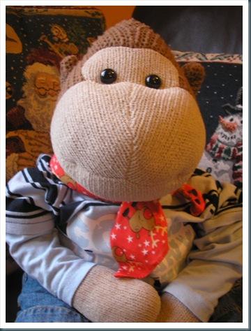 Monkey with scarf