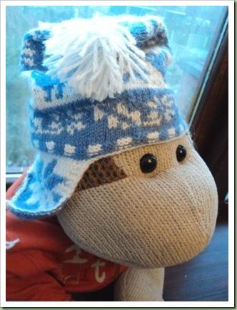 Ski Hat 3