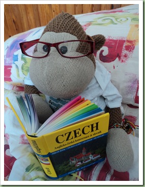 Studying Czech Language