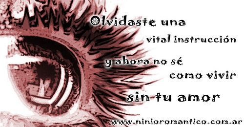 14f-desamor (15)