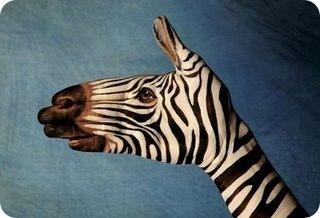 Zebra Head Art In Hand