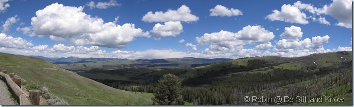 yellowstone panoramic June 2010