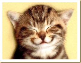 smilingcat_02