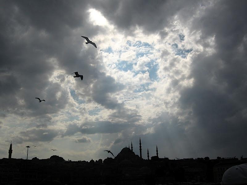 Estambul: línia del cel
