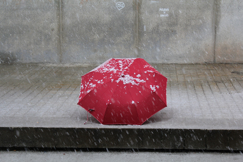Paraigües nevat II
