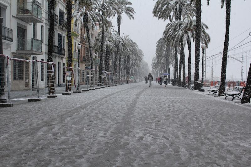 Rambla de Badalona nevada V