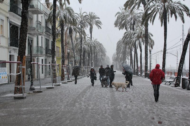 Rambla de Badalona nevada VIII