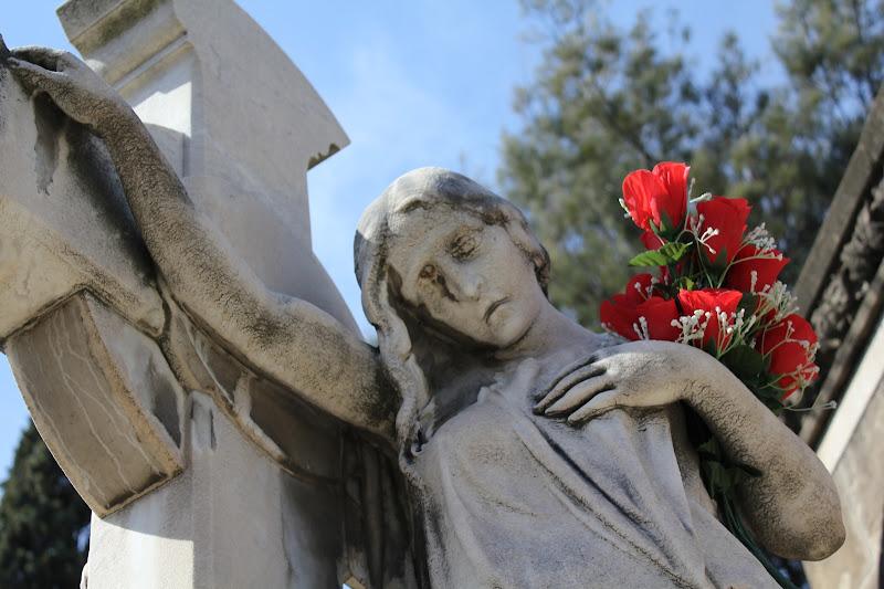 Cementiri de Montjuïc XII