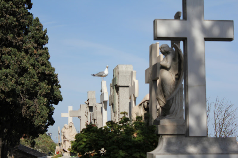 Cementiri de Montjuïc XVII