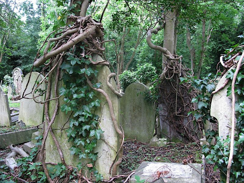 Highgate Cemetery (II)