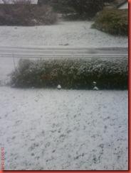 snö 004