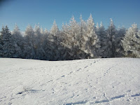 2011-01-03 13.55.48.jpg Photo