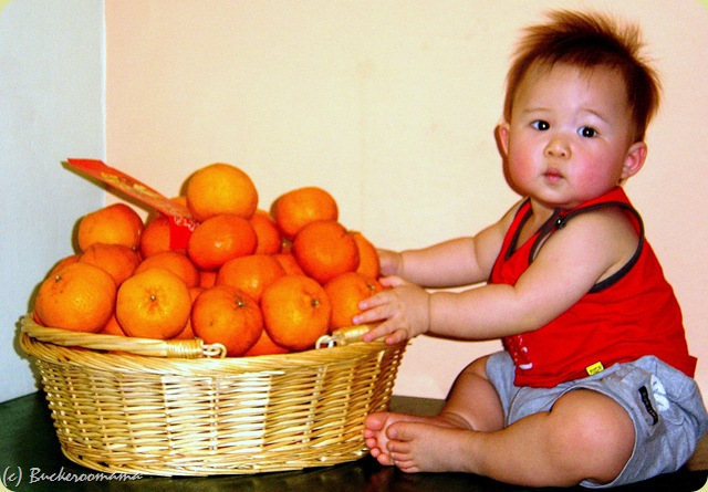 josh with oranges