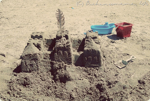 sand castle1