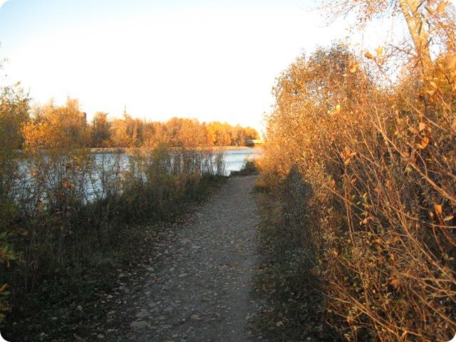 2010-10-01 (9)