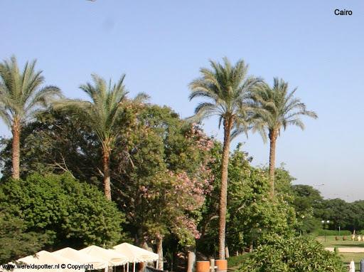 Cairo hotel 12.jpg