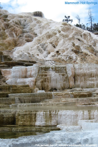 08 Yellowstone Mammoth Hot Springs.JPG