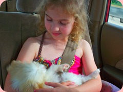 Maddie and Daisy 020