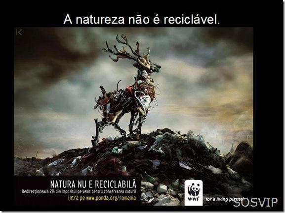 Campanha Publicitaria Conscientizacao (14)