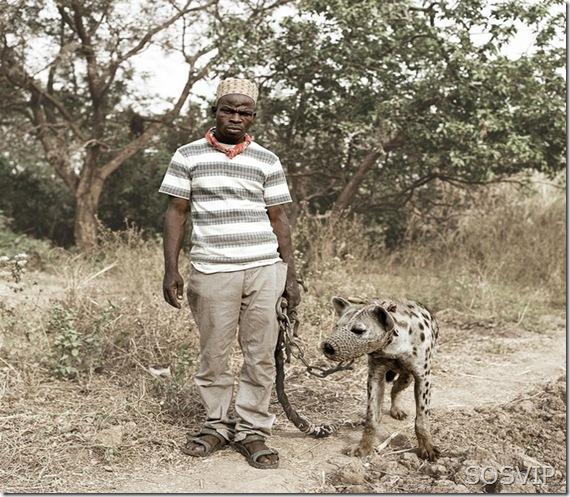 Passeio animal estimacao (4)