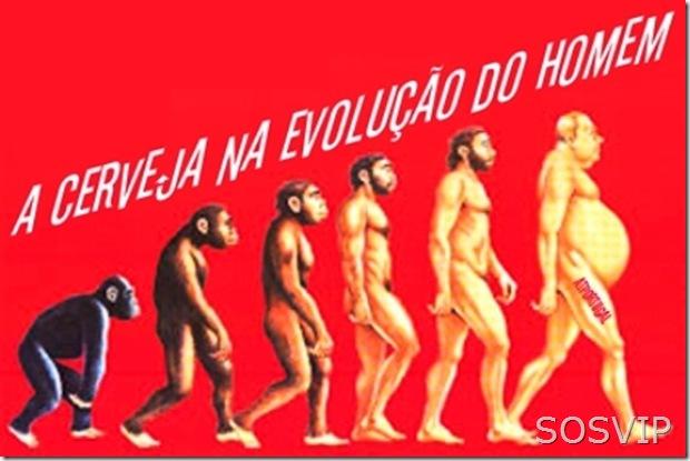 HumorEvolucaoDaCerveja