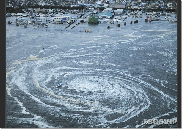 Tsunami Japao Terremoto.jpg (10)