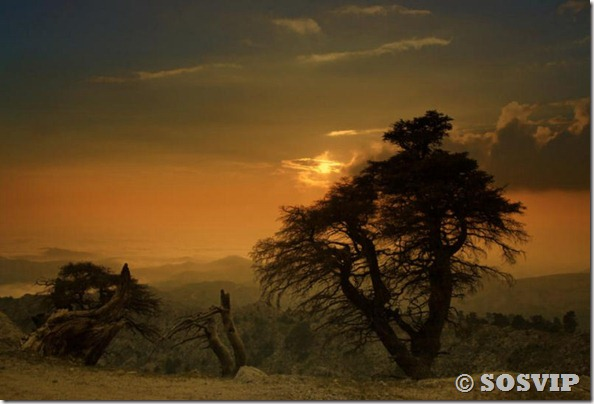 Lugares belos belas paisagens lindas (30)