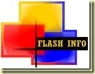 Flash info_thumb[1][1]