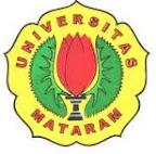 Universitas Negri Mataram